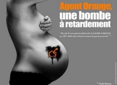 orangebombe.jpg